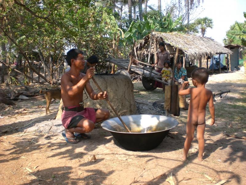 vita cambogiana