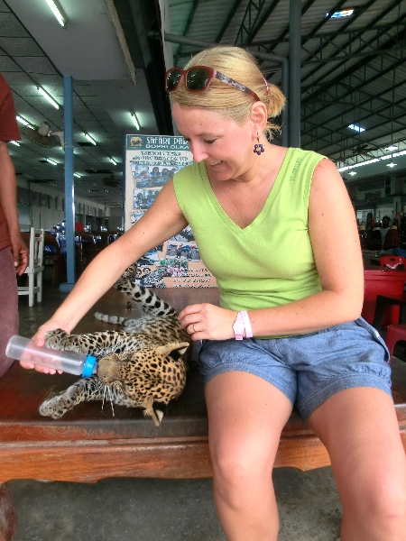 biberon al leopardo