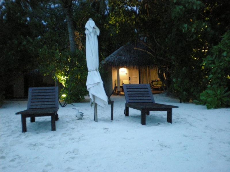 bungalow Vakarufalhi