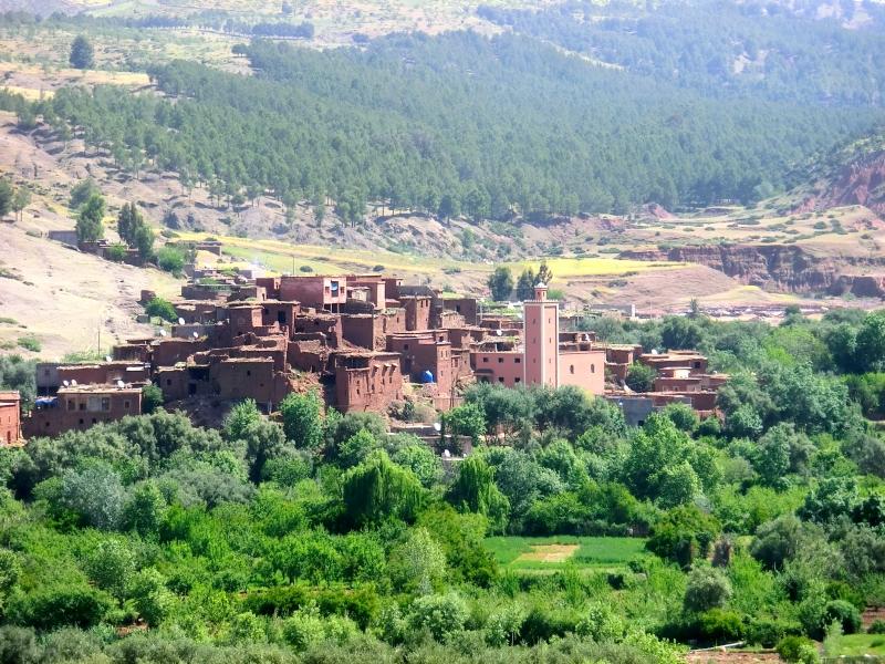 berberi Marocco