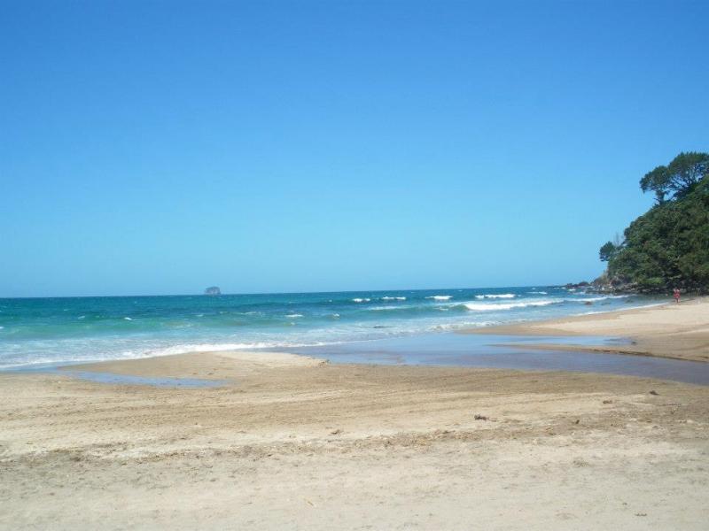 spiaggia NZ