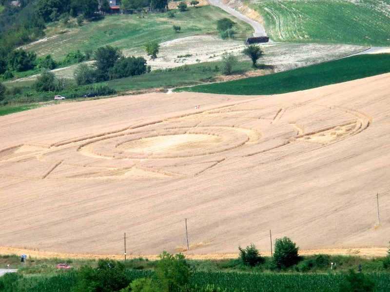 crop circle robella