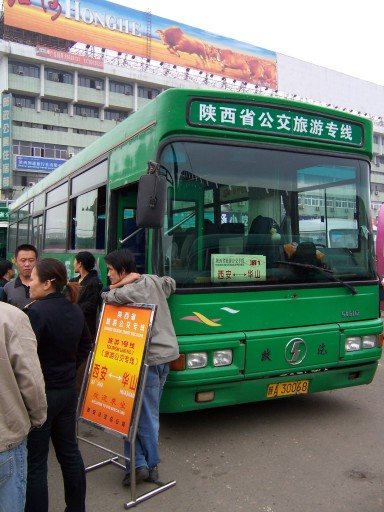 terracotta-bus