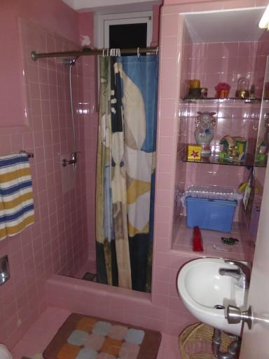 casa particular bagno, casa particular Avana, casa particular cuba
