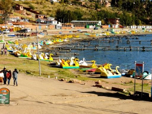 pedalò a cigno, lago titicaca, copacabana
