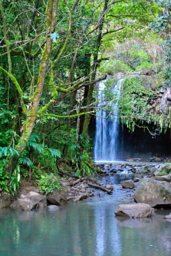 twin falls hawaii