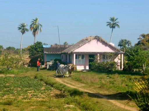 fattoria cuba, hacienda cubana, valle vinales