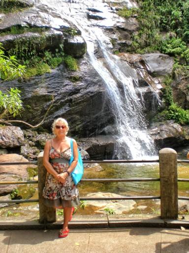 tijuca, foresta rio, cascata tijuca