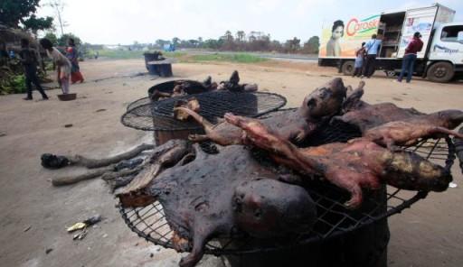 cibo di strada ebola