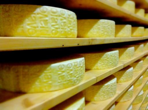 formaggio piave, lattebusche