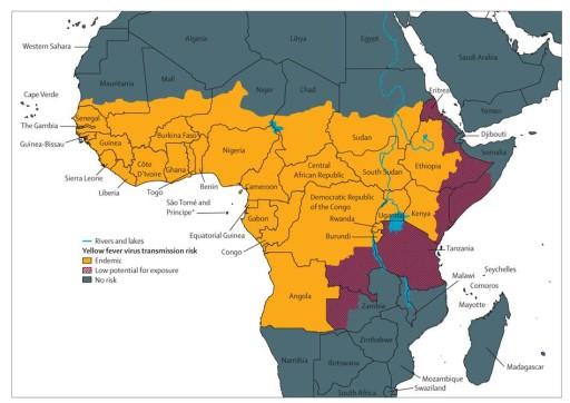 febbre gialla mappa africa
