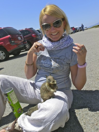 scoiattolo-california-04