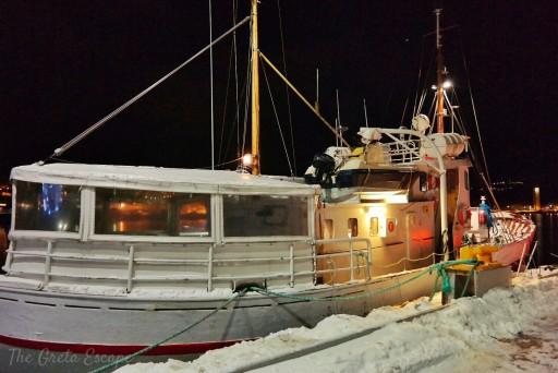 barca sui fiordi