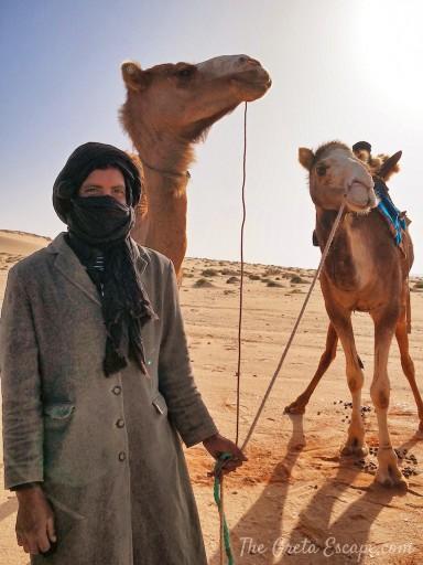 Dromedari nel sahara