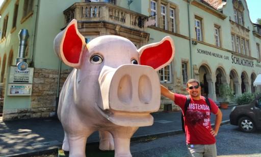Schweine museum