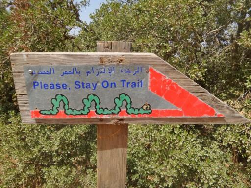 Riserva di Ajloun