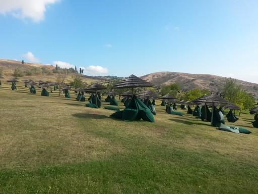 Intere colline sono destinate al relax, questa porzione al riposo diurno sotto il sole