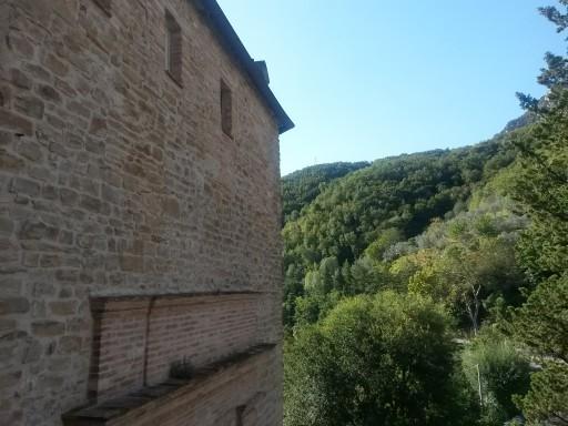 Vista dalle mura del borgo sul fitto bosco facente parte del Parco della Gola della Rossa e di Frasassi