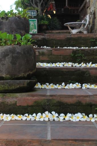 La cura dei dettagli è infinita bellezza che solo a Bali prende così tanta vita