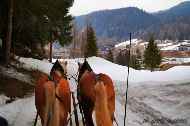 Slitta con cavalli
