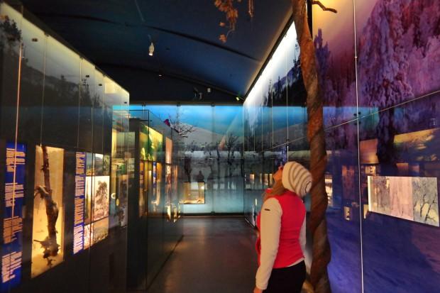 museo dei Sami