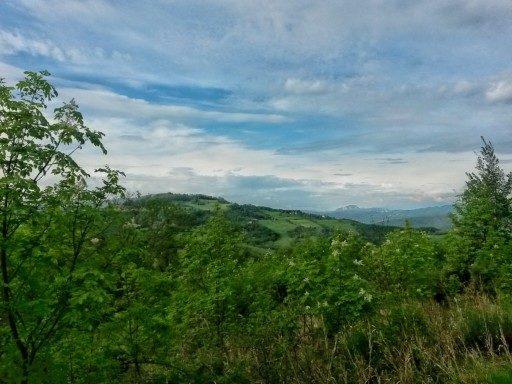 Il verde intenso della primavera appenninica e le montagne lanose