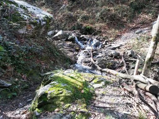 In salita un torrente, che qui pare un ruscello ma non lo è, richiede un guado facile
