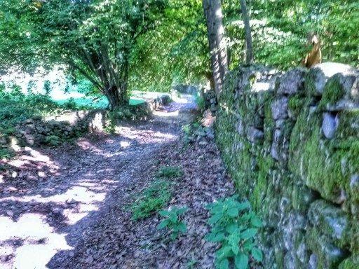 Il sentiero è per gran parte semplice e ombreggiato. L'inizio è in piano e costeggia il lago