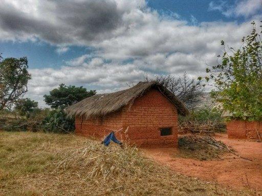 Attorno alle case rurali in mattoni di terra rossa si svolge la vita contadina in Tanzania