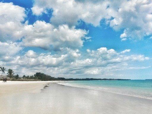 Il relax vicino a Dar Es Salaam è possibile nella bellissima Pwani Beach
