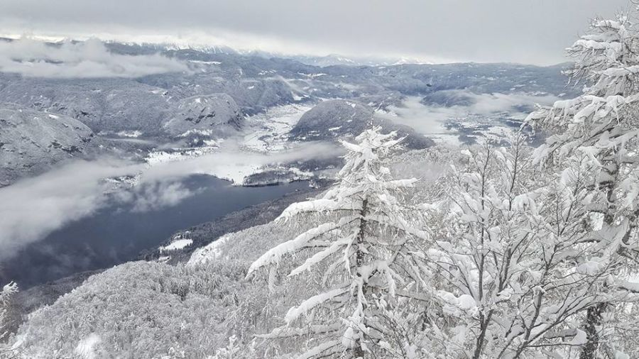 Mount Vogel