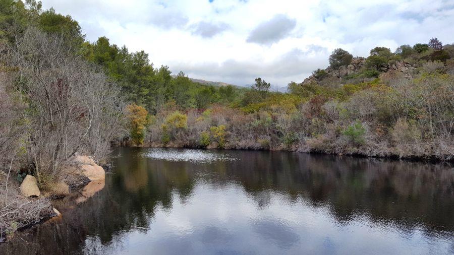 Foresta Demaniale del Monte Limbara Sud